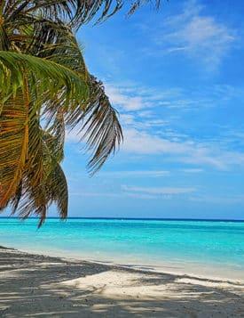 Ithaafushi - die neue Insel der Malediven